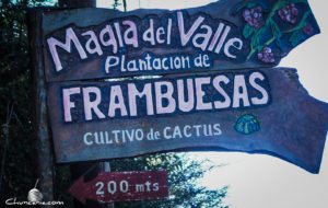 magia_del_valle_villa_de_las_rosas
