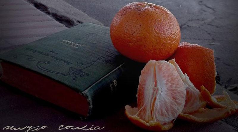 Hoy volví comer una mandarina sentado en el cordón de la vereda